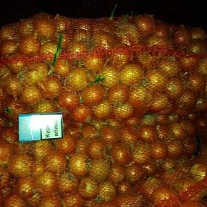 Продаем лук на перо (зелень)